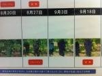 160827 (95)自園自醸紫波ワイン_CS3 - コピー