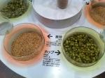 161221 (25)キリンビール名古屋工場_麦芽とホップ - コピー