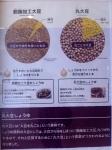 160807 (24)キッコーマン野田工場_丸大豆と脱脂大豆