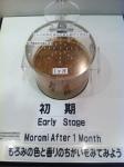 160807 (59)キッコーマン野田工場_諸味の香り確認(初期)