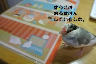 DSC_6735済