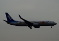 737-881 【ANA/JA85AN(東北FLOWER JET)】(20170201)