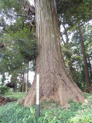 老尾神社-28