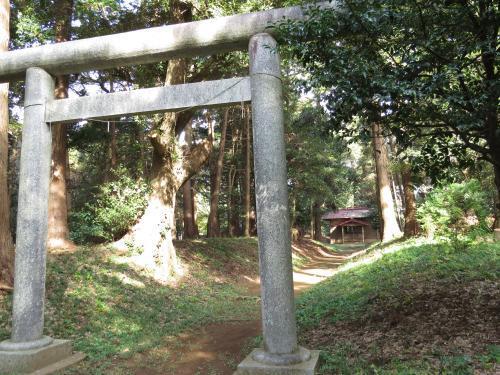 老尾神社-45