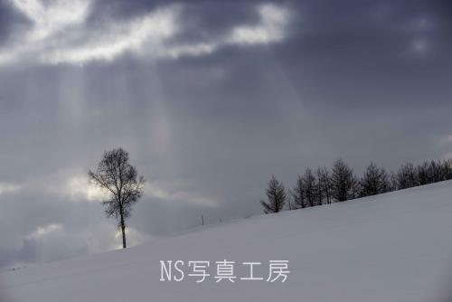 _DSB9341.jpg