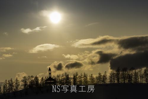 _DSB9393.jpg