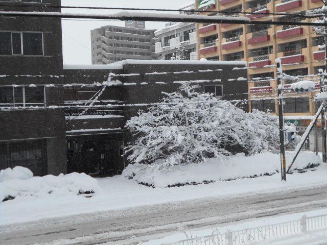 ゆきここんことメンズ冬服 003