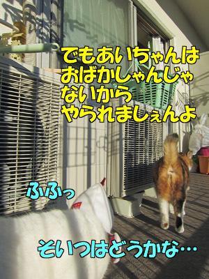 170101-12.jpg