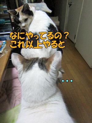 170112-04.jpg