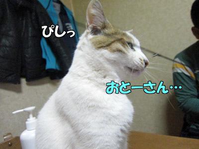 170130-09.jpg