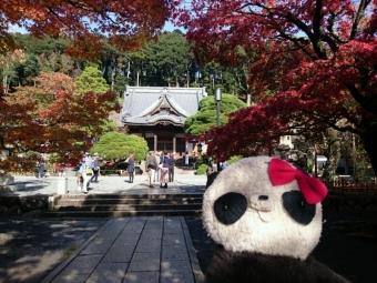 おばぶ秋の修禅寺