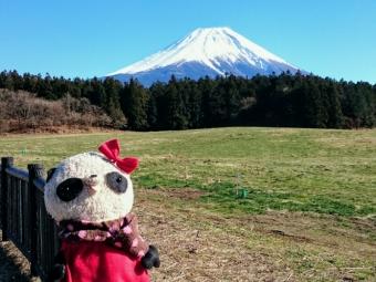 おばぶと富士山
