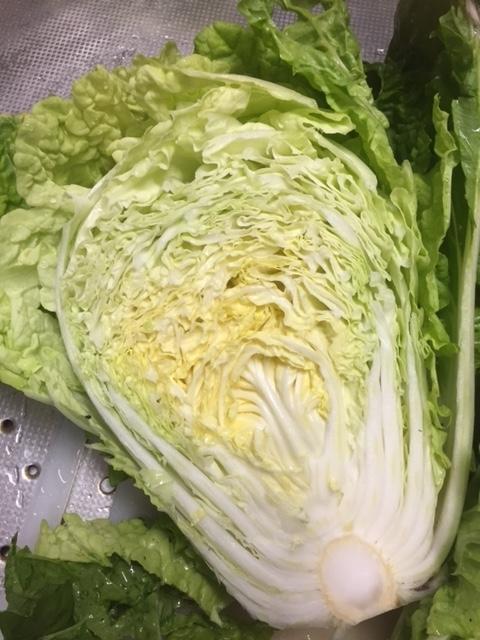 1215ミニ白菜6