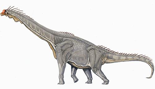超巨大恐竜はどうして存在できたか
