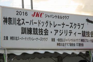 DSC_0046_201612241943498cd.jpg