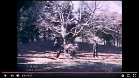 back number - 春を歌にして MV