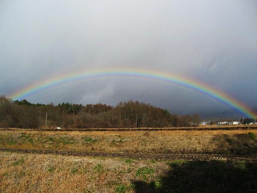 2016虹