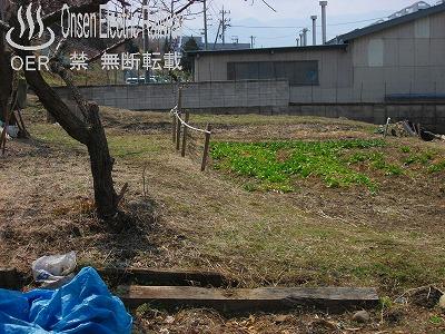 k_sanada_12-2_kawarayagi-kamisina_01.jpg