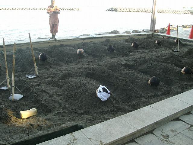 12月11日海浜2