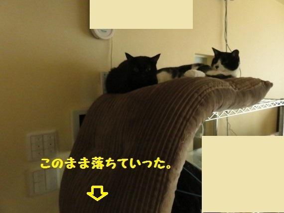 20161219-03.jpg
