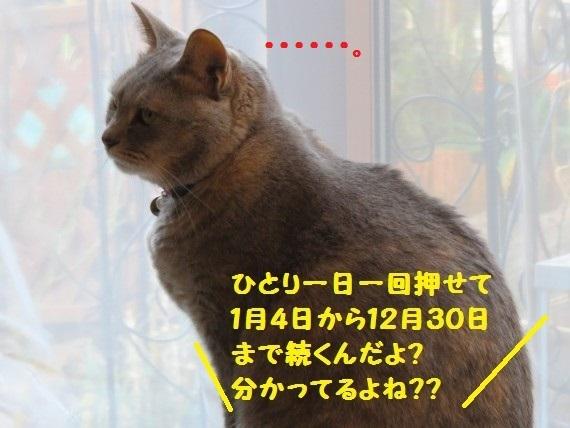 20170104-002.jpg