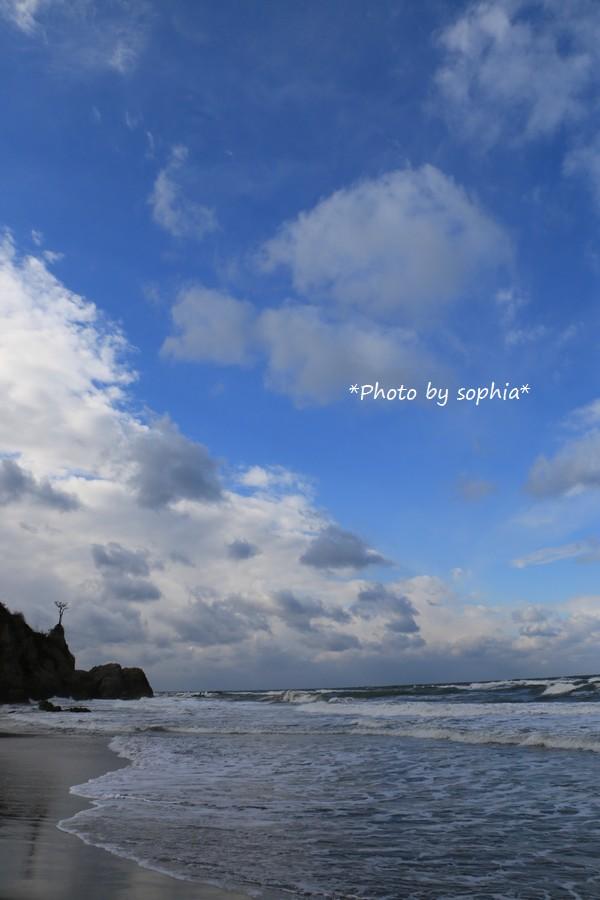 同じ日の海Ⅱ