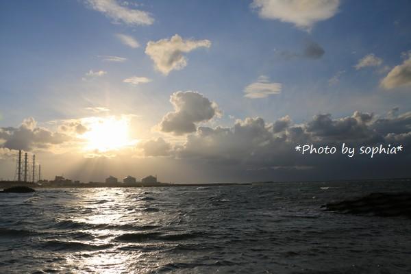 いつもと違う海