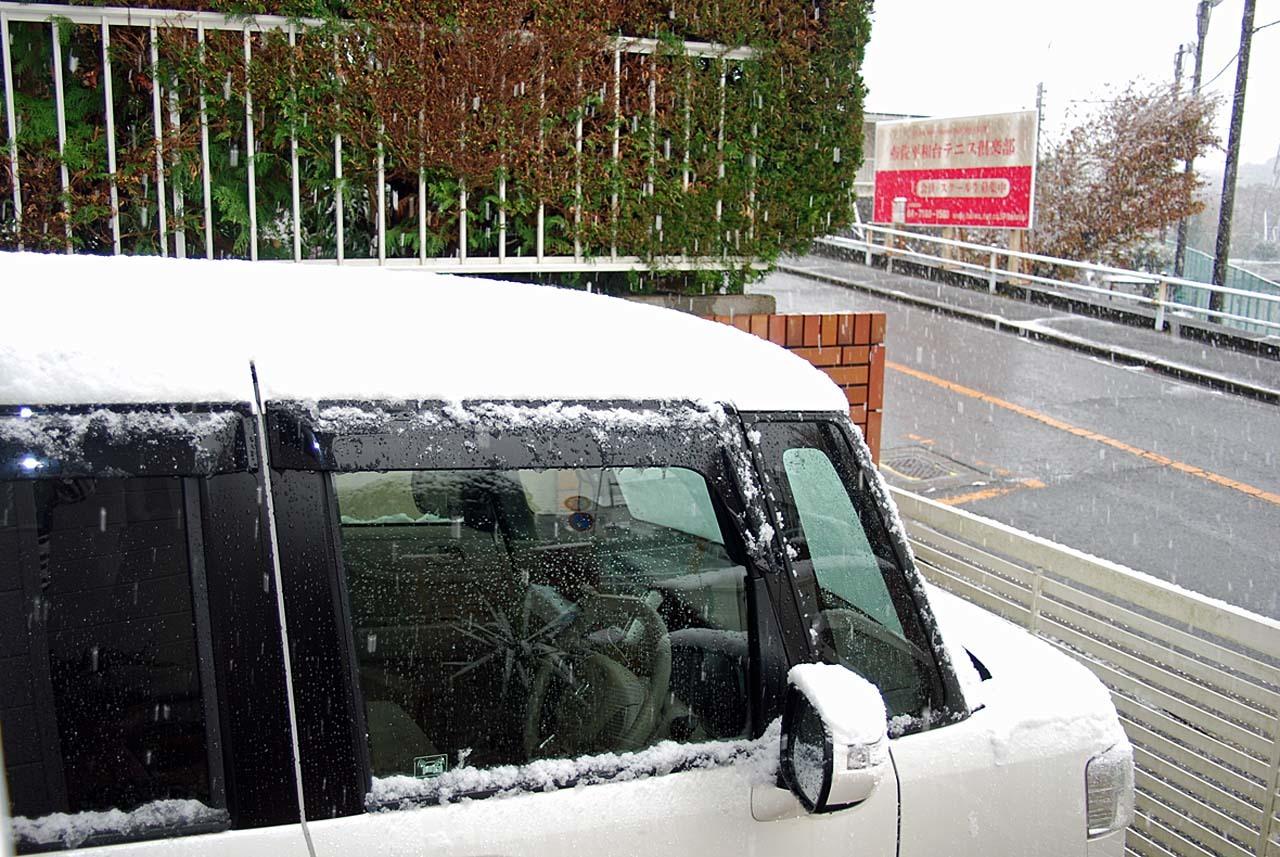 DSC_9982初雪