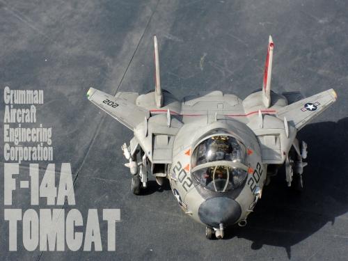 F14_11b.jpg