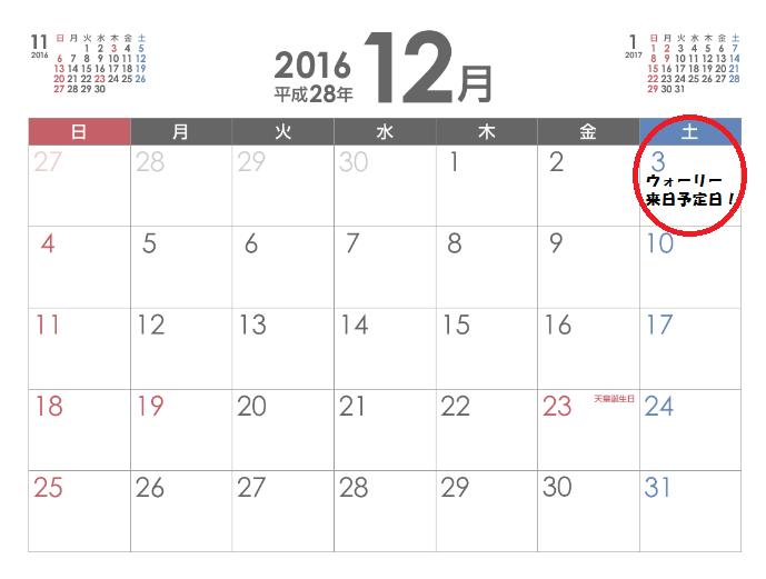 12月-min