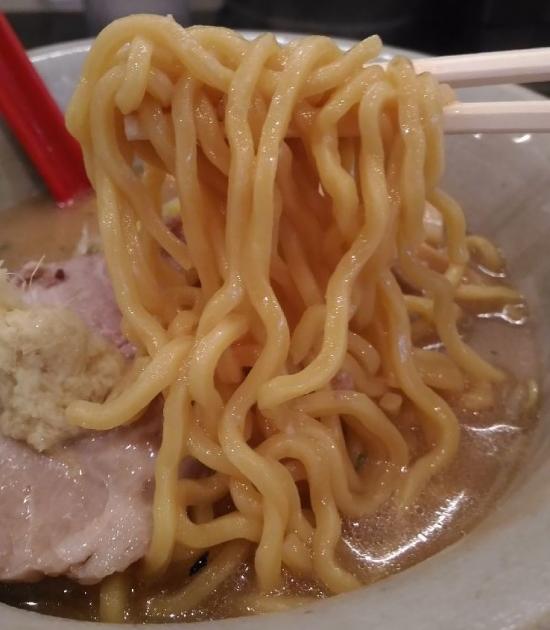 KanazawaTaiga_008_org.jpg