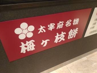 MingMatsushima_002_org.jpg