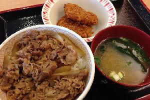sukiyaoveryoshinoya.jpg