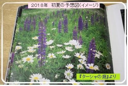 2018年 初夏の予定イメージ