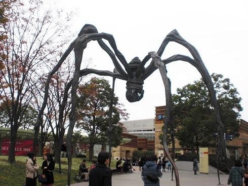 六本木 蜘蛛