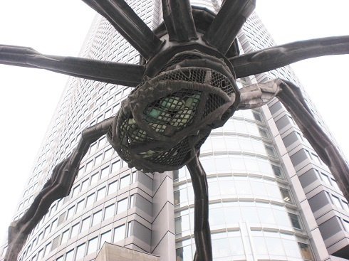 六本木 蜘蛛の卵