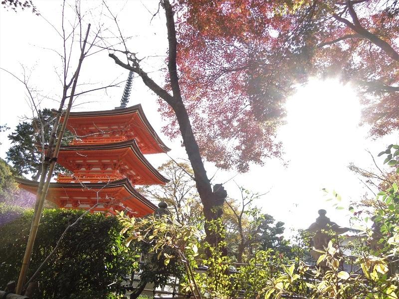 子安塔と紅葉