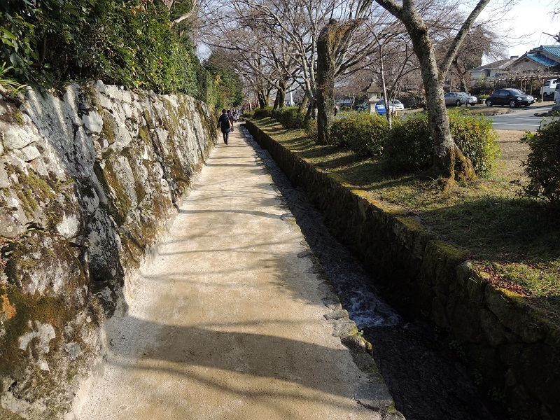 日吉大社の参道