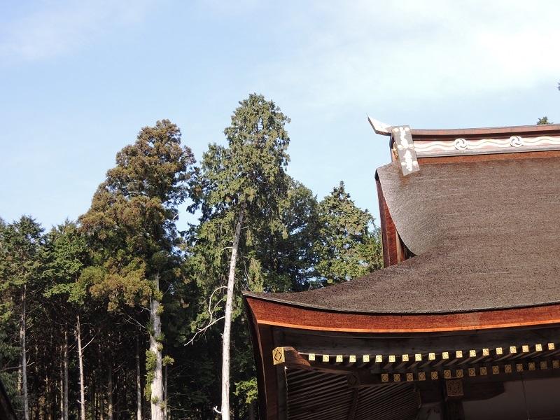 東本宮本殿