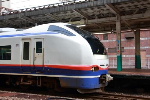 しらゆき 長岡駅