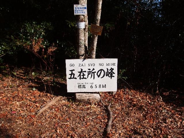03_P1092126.jpg