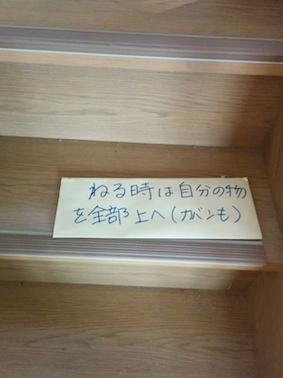 ふーちゃん写真2