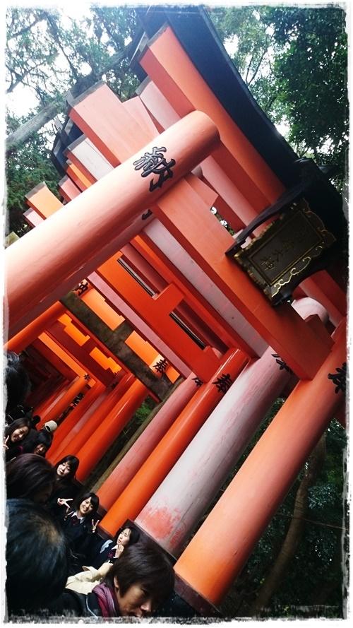 京都2DSC_5764