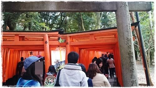 京都2DSC_5765-1