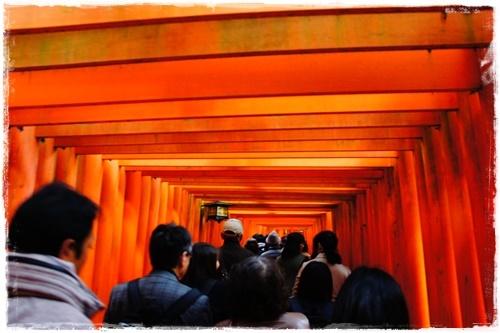 京都2DSC03990