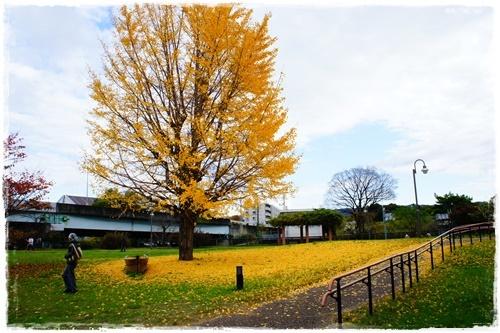 京都2DSC04029