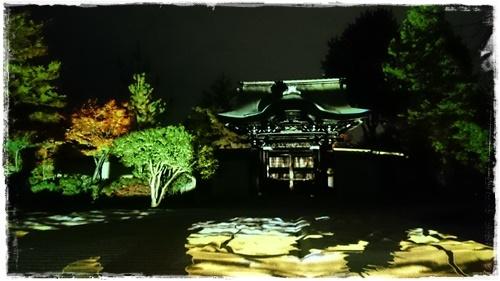 京都3DSC_5827
