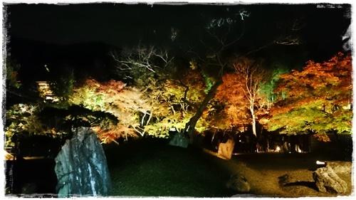 京都3DSC_5832