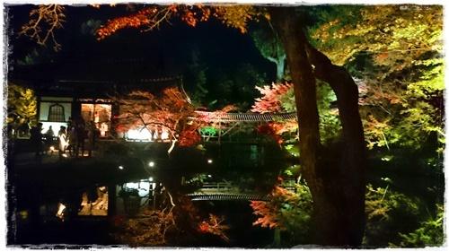 京都3DSC_5835