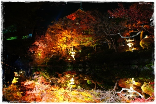 京都3DSC04137